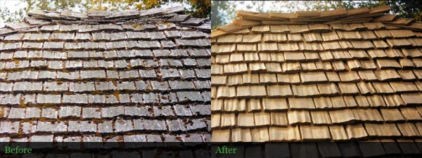 Cedar shake roof restored in Lane County Oregon