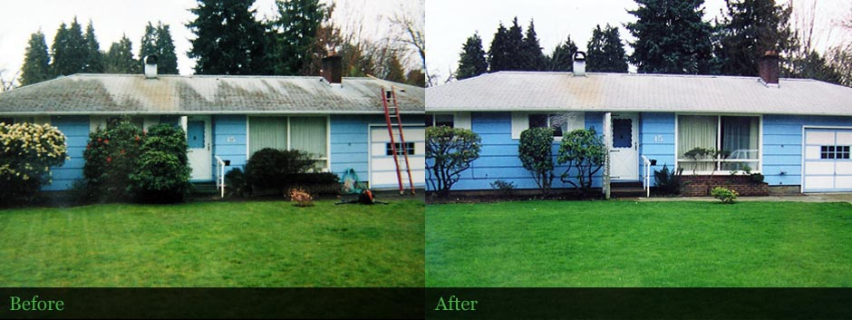 Composite roof cleaned in Springfield, OR