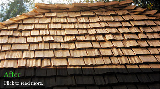 Eugene roof care and wood care- after picture of roof