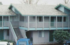 Cedar Shake Roof Treatment
